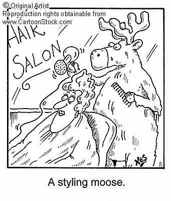 http://www.smouse.force9.co.uk/cartoon8.jpg